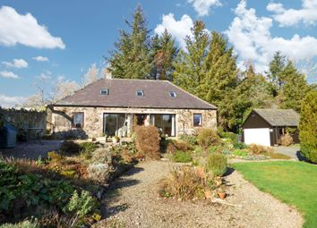 Thumbnail 4 bedroom cottage for sale in Milfield, Wooler