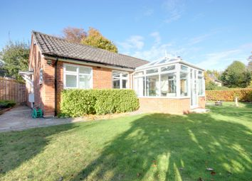 Thumbnail 3 bed detached bungalow to rent in Levylsdene, Guildford