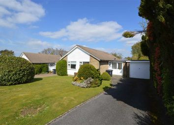 Thumbnail 3 bed detached bungalow to rent in Jefferies Way, Crowborough