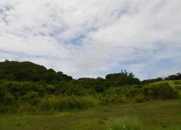 Thumbnail Land for sale in East Coast, Inland, Saint John, Barbados