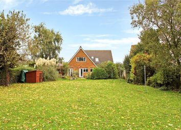 Thumbnail 4 bed detached house for sale in Green Man Lane, Kirstead (Close To Brooke), Norwich, Norfolk