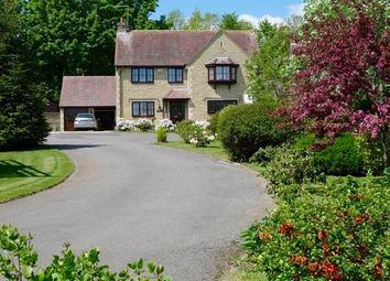 Thumbnail 4 bedroom detached house for sale in The Sycamores, Bourton, Gillingham