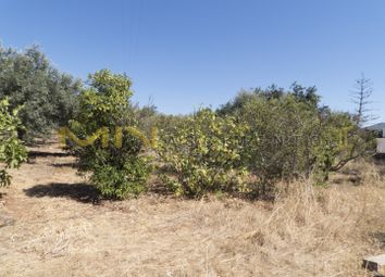 Thumbnail Land for sale in Village Of Bordeira, Santa Bárbara De Nexe, Faro, East Algarve, Portugal