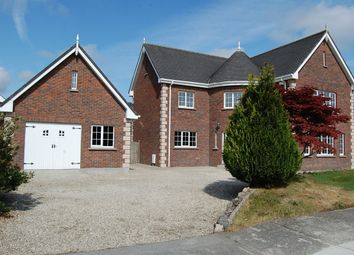 Thumbnail 4 bed detached house for sale in 12 Belfry Gardens, St Alphonsus Road, Dundalk, Louth