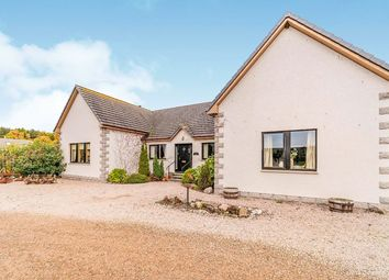 Thumbnail 4 bed bungalow for sale in Orton, Fochabers