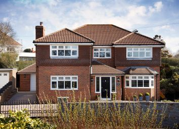 Thumbnail 4 bed detached house for sale in Langland Court Road, Langland, Swansea