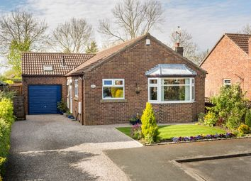 Thumbnail 2 bed bungalow for sale in Elvington Park, Elvington, York