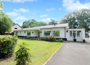 Thumbnail 4 bed detached bungalow for sale in Redwick, Magor, Caldicot