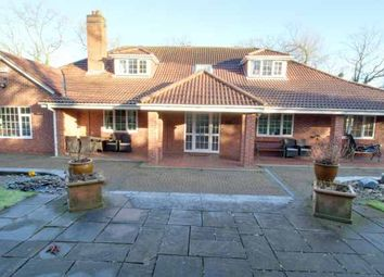 Thumbnail 6 bed detached house for sale in Pastures Avenue, Derby, Derbyshire