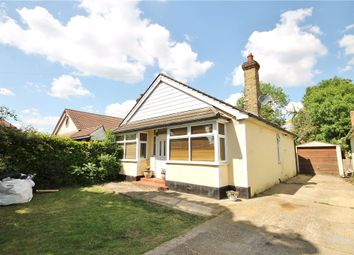 Thumbnail 3 bed detached bungalow for sale in Scotts Way, Sunbury-On-Thames, Middlesex