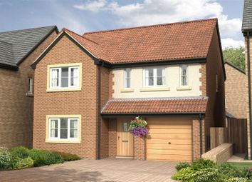 Thumbnail 4 bed detached house for sale in The Sycamore - Nursery Gardens, Station Road, Stannington