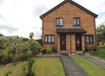 Thumbnail 1 bed semi-detached house to rent in Chestnut Grove, Motherwell, North Lanarkshire