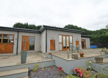 Thumbnail 4 bed detached bungalow for sale in Westwood Lane, Normandy, Guildford