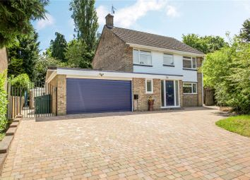 Thumbnail 4 bed detached house for sale in Beech Close, Chiddingfold, Godalming, Surrey
