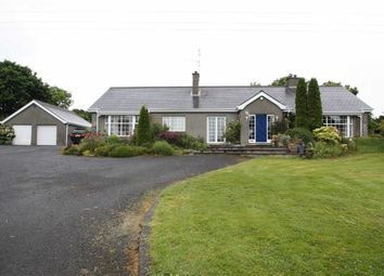 Thumbnail 4 bed detached bungalow to rent in Dunmore Road, Ballynahinch