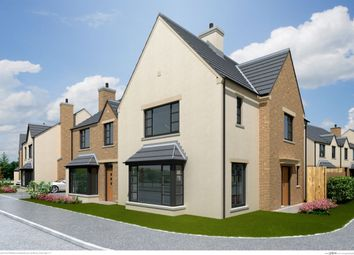 Thumbnail 3 bed semi-detached house for sale in The Foxglove, Ferrard Meadow, Antrim