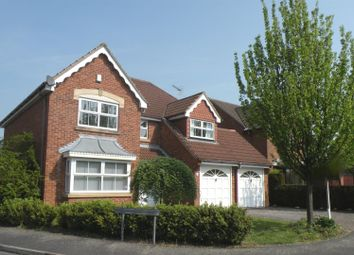 Thumbnail 4 bed detached house to rent in Limedale Avenue, Oakwood, Derby