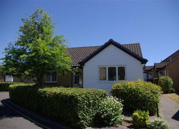 Thumbnail 2 bed bungalow to rent in Newnham Green, Maldon