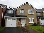 Thumbnail 5 bed detached house to rent in Scott Street, Tipton