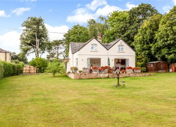 Thumbnail 4 bed property for sale in Barwick, Ware, Hertfordshire