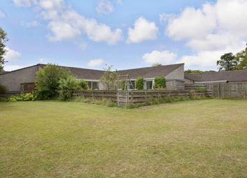 Thumbnail 3 bed bungalow for sale in Meadow View, Kildrum, Cumbernauld, North Lanarkshire