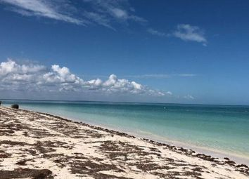 Thumbnail 2 bed apartment for sale in Yum Balam, Holbox Island, Mexico