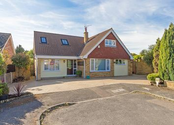 Thumbnail 5 bedroom detached bungalow for sale in Coppins Lane, Borden, Sittingbourne