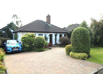 Thumbnail 3 bed bungalow for sale in Falcon Avenue, Newtownards