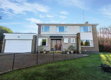 Thumbnail 4 bed detached house for sale in Oaklands, Ponteland, Newcastle Upon Tyne