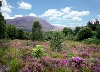 Thumbnail  Property for sale in Kishorn, Strathcarron