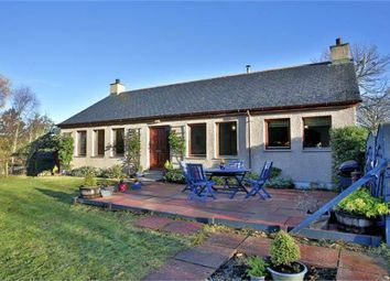 Thumbnail 4 bed detached bungalow for sale in Pittenderich, Lumphanan, Banchory, Aberdeenshire