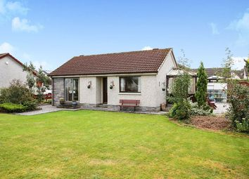 Thumbnail 2 bed bungalow for sale in Calside Avenue, Dumfries