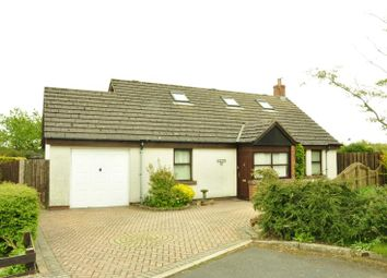 Thumbnail 3 bed bungalow to rent in High Garth Meadows, Ivegill, Carlisle