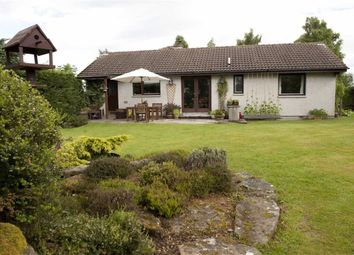 Thumbnail 5 bed detached bungalow for sale in Culbokie, Dingwall, Ross-Shire