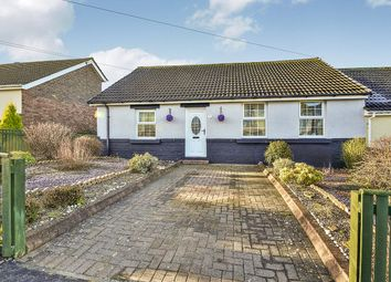 Thumbnail 2 bed bungalow for sale in Beech Terrace, Craghead, Stanley