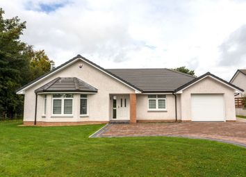 Thumbnail 4 bed bungalow for sale in Rosedale Gardens, Greenlea, Dumfries