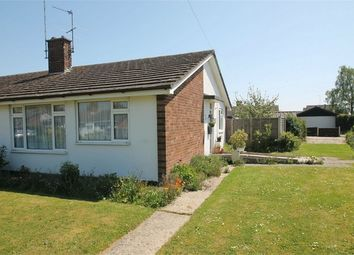 Thumbnail 2 bed semi-detached bungalow for sale in 7 Vine Drive, Wivenhoe, Colchester, Essex