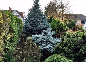Thumbnail 6 bed semi-detached house to rent in Wycombe Gardens, London