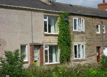 Thumbnail 2 bed terraced house to rent in Temple Houses, Haydon Bridge, Hexham