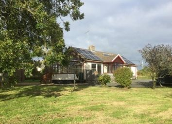 Thumbnail 3 bed bungalow to rent in Woodland Vale, Ludchurch, Narberth