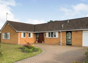 Heather Close, St. Leonards, Ringwood BH24. 3 bed detached bungalow for sale