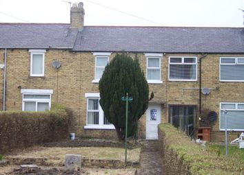 Thumbnail 3 bed terraced house to rent in Beech Terrace, Ashington, Northumberland