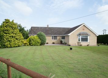Thumbnail 4 bed bungalow for sale in New Road, Manea, March