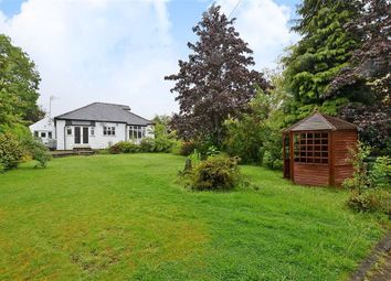 Thumbnail 4 bedroom detached bungalow for sale in Church Lane, Sheffield, Yorkshire