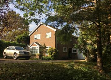Thumbnail 4 bed detached house for sale in Brook Close, Storrington, Pulborough, West Sussex