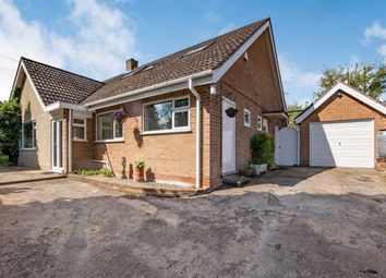 Thumbnail 3 bed bungalow for sale in Brampton Abbotts, Ross-On-Wye