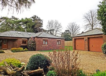 Thumbnail 5 bedroom bungalow for sale in Rabbit Lane, Downham Market