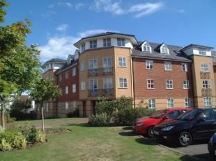 Thumbnail 2 bed flat to rent in Dexter Close, St Albans