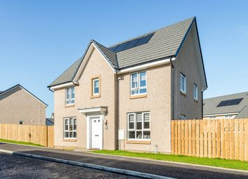 """Thumbnail 4 bedroom detached house for sale in """"Craigston"""" at Griffon Crescent, East Kilbride, Glasgow"""
