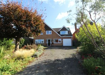 Thumbnail 4 bed detached house for sale in Little Lunnon, Dunton Bassett, Lutterworth